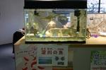 くすくす淀川展�B.jpg